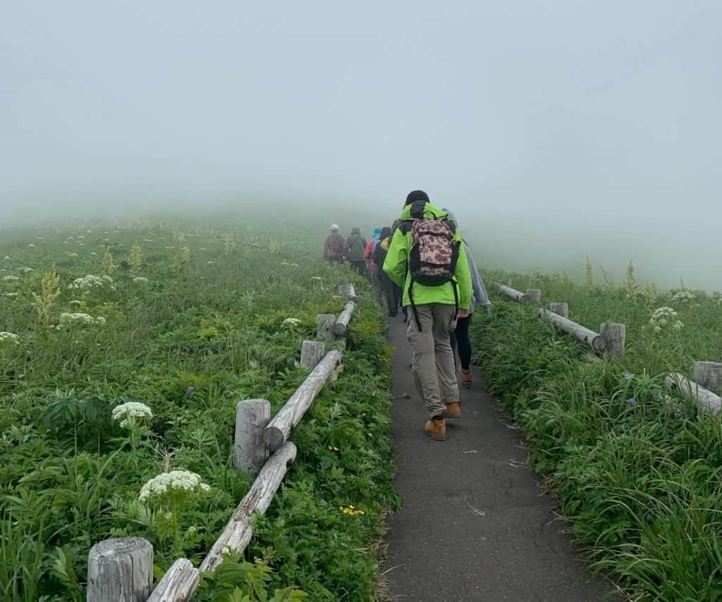 Hiking Rebun Island in the middle of June.