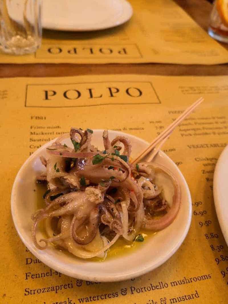 polpo-squid