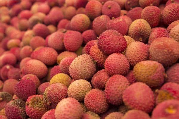 rambutan-vs-lychee