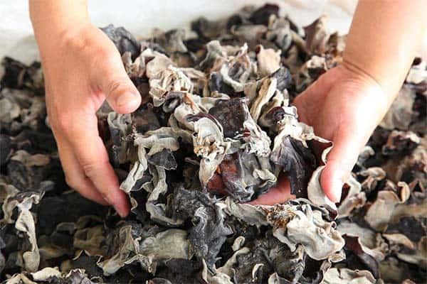 dried-kikurage-prepare