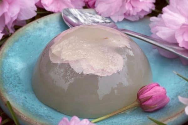 Sakura Cherry Blossom Raindrop Cake